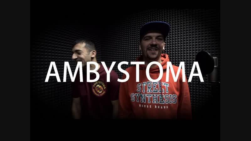 DOMINO LIVE GUEST AMBYSTOMA
