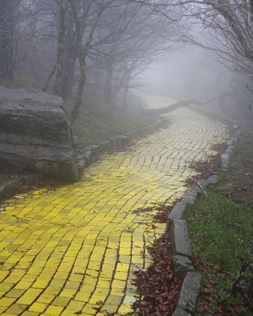 Дорога из желтого кирпича в заброшенном парке Страна Оз