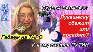 Лукашеску посадят или сбежит. Судьба главного ОМОНа Балабы. К чему снится Руж Янъг