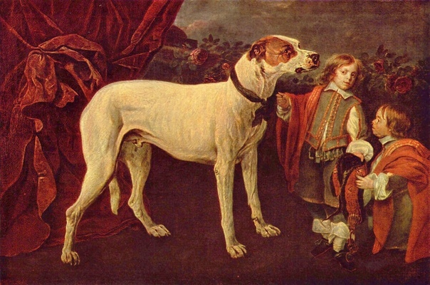 «Вешать собак»  история пугающего выражения. Зачем вешали собак на Руси
