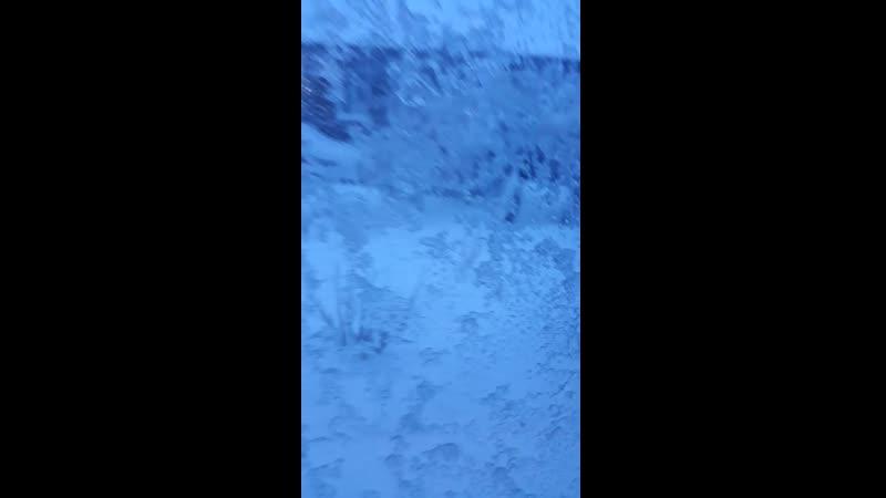 Video-1470711c814498e95c7223488aa98da6-V.mp4