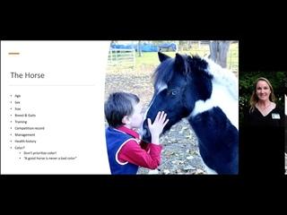 Выбор первой лошади / Selecting Your First Horse