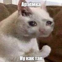 Артём Петрученко