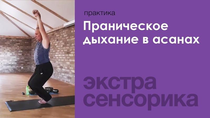 Праническое дыхание в йога асанах — Сурья дас