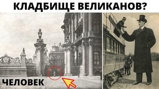 Нашли и потеряли кладбище великанов в Санкт Петербурге ?