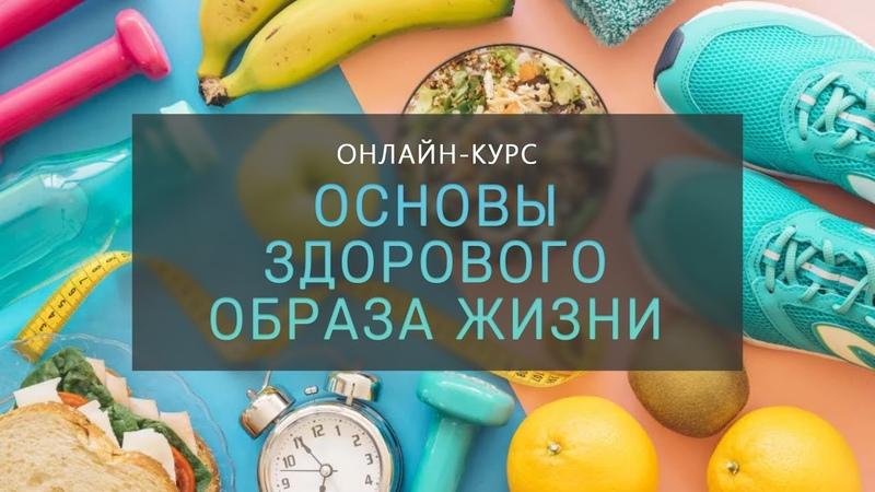 Курс Основы здорового образа жизни