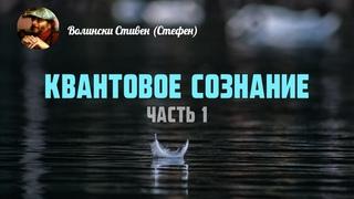 """Стивен (Стефен) Волински """"Квантовое Сознание"""" (часть 1 из 2)"""
