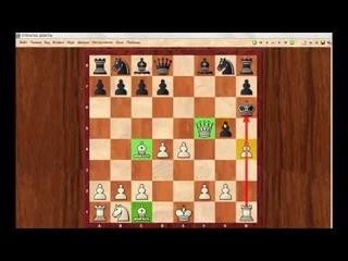 Шахматы для начинающих. Урок 9