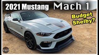 Mustang Mach 1: Best Mustang G Ever? - Two Takes