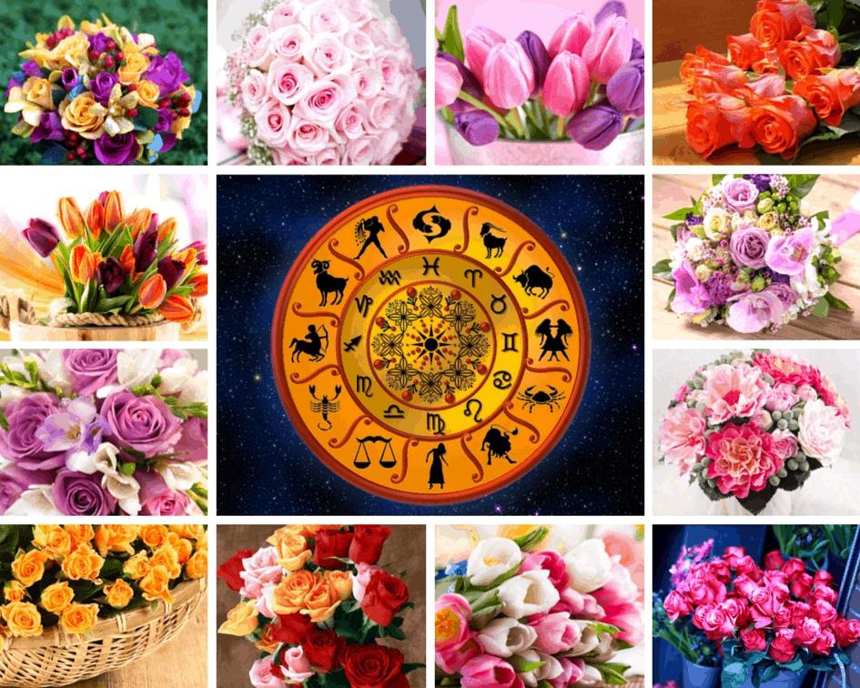 По цветочному гороскопу поздравление