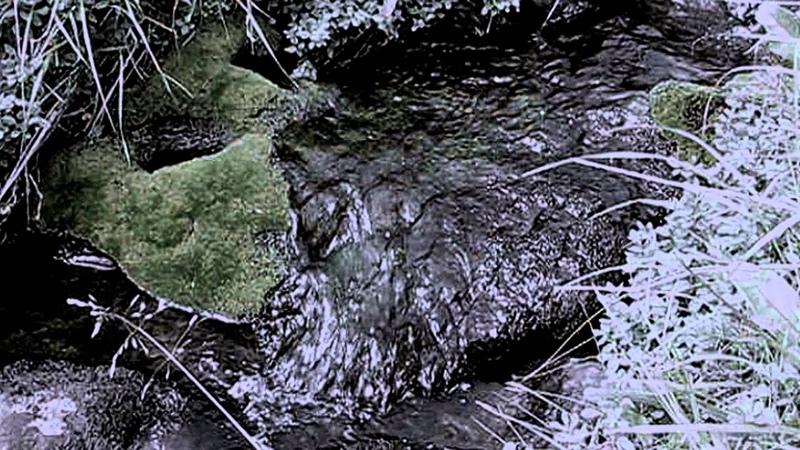 Vspolokh Vikhr Amongst mossy stones Black Metal Russia