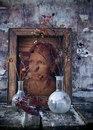 Фотоальбом Веры Ординой