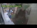 Vídeos incríveis capturados por câmeras de vigilância. Compilação de vídeos incríveis.