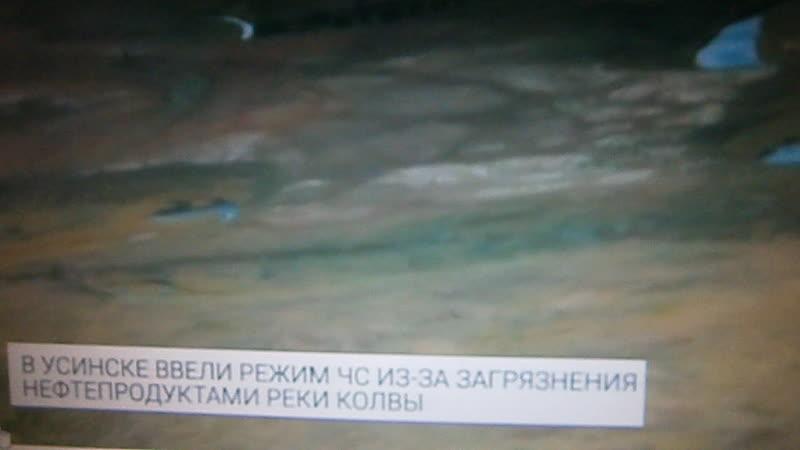 В реку Колва Ненецкий автономный округ республика Коми разлилась нефть