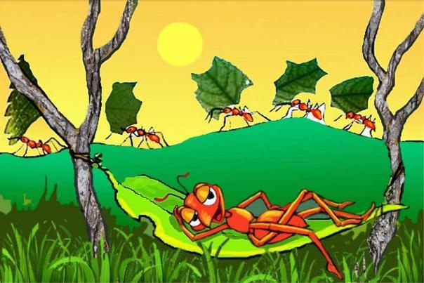 открытки труженики муравьи этим советам соберете