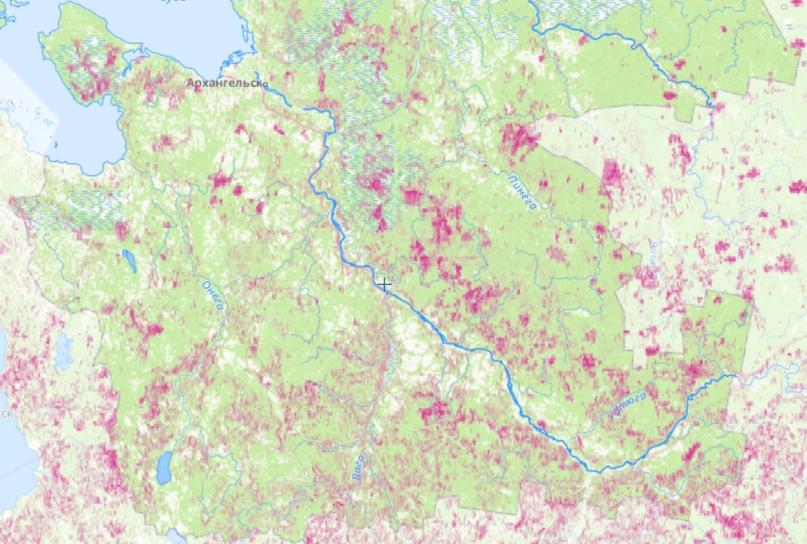 Лесопотери Архангельской области с 2000 по 2018 год по данным сайта ЛВПЦ России
