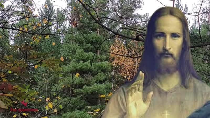 Душа после Смерти продолжает Жить святитель Иоанн Максимович архиепископ Шанхайский и Сан Францисский