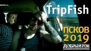 TripFish Live - Псков 2019