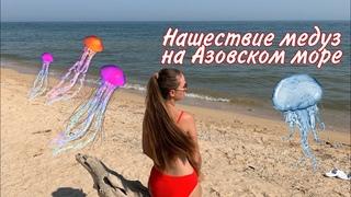 ГОЛУБИЦКАЯ 2021 / Нашествие МЕДУЗ и КОМАРОВ / ужалила медуза на Азовском море