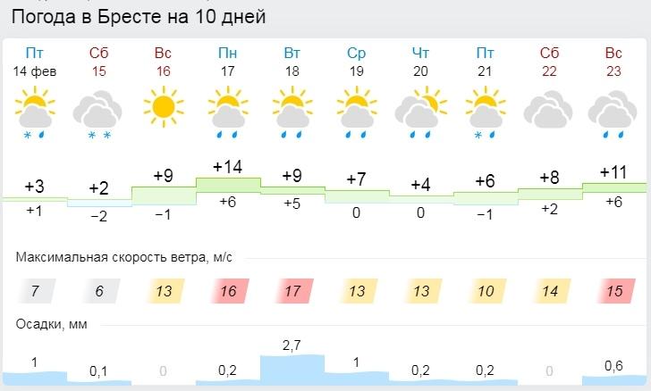 Снег, солнце и тепло. А потом +14. Погода в Бресте в выходные