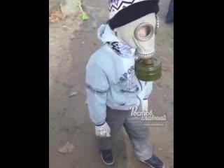 Жителей Левенцовки травят дымом со свалки  Ростов-на-Дону Главный