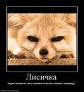 Личный фотоальбом Александра Крохмалева