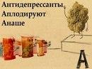 Фотоальбом Любови Спрядышевой