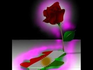 Sipan Xelat KURD