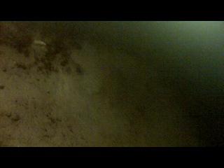 Дайвинг в Крещение - Авроровец