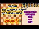 Шахматный урок 5 для начинающих что такое шах мат и пат