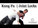 Learn Choy Li Fut Kung Fu   Joint locks