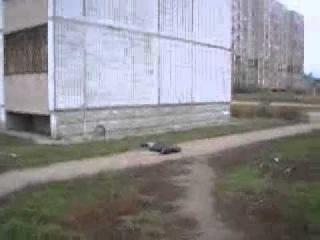 летающий наркоман человек прыгнул с 9 этажа встал и пошел под воздействием наркоты  он умер через 2 ч
