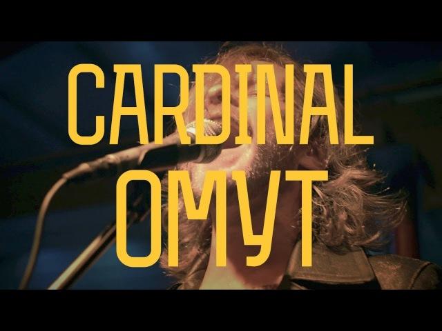 CARDINAL ОМУТ CSBR live