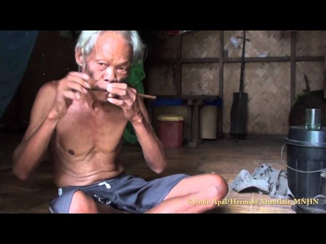 Palawan mouth harp played by Undu Apäl, Makagwaq, Palawan, Philippines