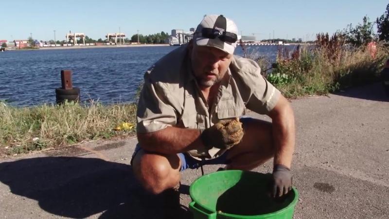 На рыбалку с Нормундом ловля болонской удочкой на канале 5