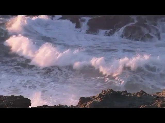 Скрипка и море Marton Tosca Fantasy Музыка души