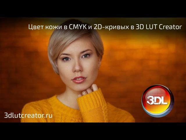 Коррекция цвета кожи в CMYK и 2D кривых в 3D LUT Creator