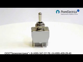 648H/2 тумблер 10 Ампер ON OFF MOM 3 положения вкл., выкл. вкл.без фиксации