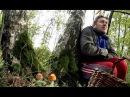 33 квадратных метра - Хождение по лесу