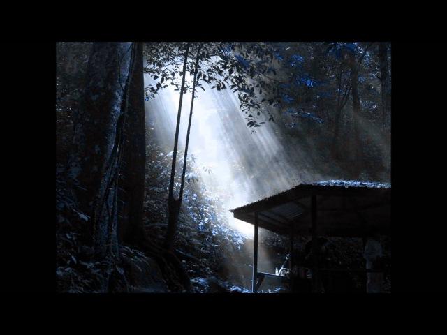 Song from a Secret Garden: Violin, Viola, and Piano (Stefan L. Smith Mercuzio)