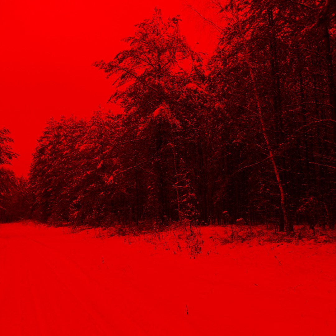 фото из альбома Тамары Кауровой №5