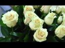 Фото видео выписки из роддома 89892727282