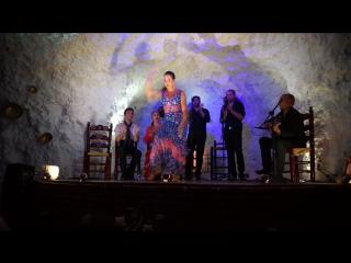 El Templo Del Flamenco parte 1