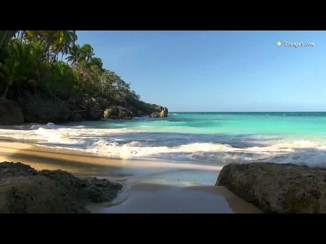 Видео в HD для занятия йогой красивое релакс видео и музыка со звуками природы