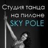 Студия танца на пилоне SKY POLE Озерки