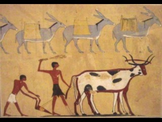 Stories from the stone age  First Farmers  pt.1