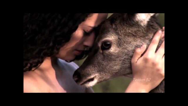Boom Boom Ba ~ Metisse ( Beautiful Nature) 720p hd