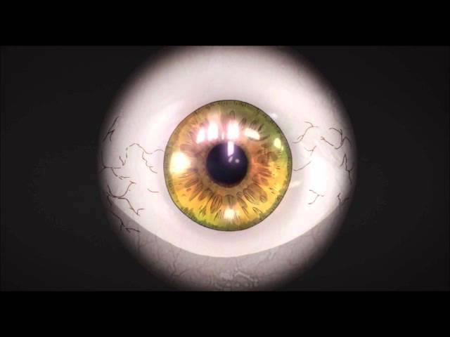 Hypnotik Parasyte Remix