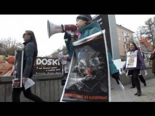 III Международная и Всероссийская акция Цирк без жестокости! Цирк без животных, Омск, 15 апреля 2017