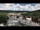 Longmire Days Paradise Ranch